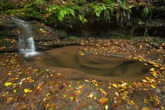 Waterfall Butzerbachtal during fall in Germany. Stock Photography