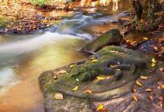 Waterfall in Cambodia Royalty Free Stock Photo