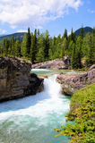 Waterfall in the Canadian Rockies Royalty Free Stock Photography