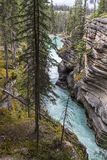 Waterfall in the Canadian Rocky Mountains- Jasper National Park Stock Image