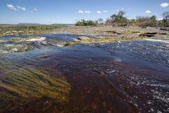 Waterfall in the Canaima Lagoon, Venezuela stock photos