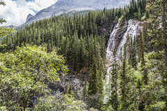 Waterfall in Canmore III Stock Image