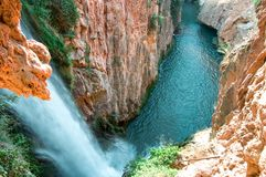 Waterfall and a canyon with surrounded vegetation stock images