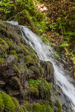Waterfall in the Carpathian mountains Royalty Free Stock Photos