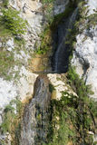 Waterfall in the Carpathians. Waterfall gathering in a small basin and then continuing downwards Royalty Free Stock Images