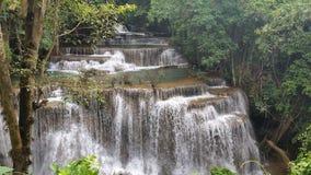 Waterfall cascade fall cataract forest. Waterfall fall cataract Royalty Free Stock Photos