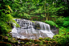 Waterfall Cascade in Forest Royalty Free Stock Photos