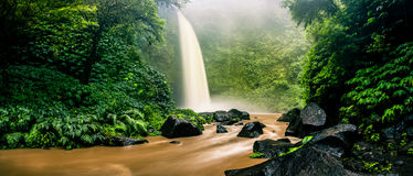 Waterfall cascade hidden in tropical jungle on the background green tree forest nature and mountain. Panoramic photography: Spectacular morning view, beautiful royalty free stock photos