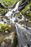 Waterfall. Royalty Free Stock Image