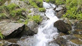 Waterfall. Royalty Free Stock Photos