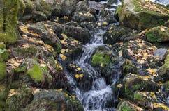 Waterfall cascade of mountain stream in the Lakatnik rock Stock Photo