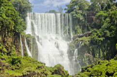 The Waterfall cascade. San Marti in Iguasu Stock Images