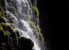 Waterfall cascades flowing down from the cliff . Jets of water cascade flowing down from the rocks covered with green moss on a black background Royalty Free Stock Photo