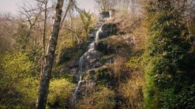 Waterfall Cascading Down Rock Face In The Woods stock video