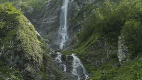 Water river falling from inside a waterfall in slow motion. Waterfall in the Caucasus mountains. Waterfall in the Caucasus mountains surrounded by many pine stock video