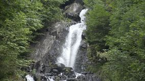 Waterfall in the Caucasus mountains surrounded by many pine trees and shrubs, ending into mountain river. Waterfall in the Caucasus mountains surrounded by many stock video