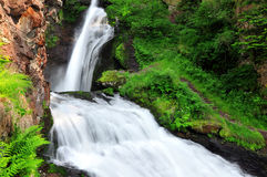 Waterfall of Cavalese Stock Photography