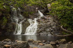 Waterfall in a Celtic Rainforest Stock Images