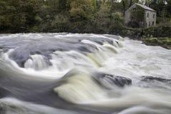 Waterfall. At Cenarth Falls near Newcastle Emlyn, Wales Stock Photography