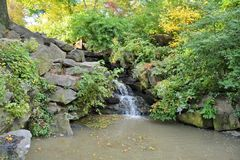 Waterfall in Central Park Stock Photography