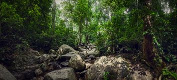 Waterfall Chan Ta Then in the jungles of Thailand. Big panorama. Boulders in the forest. Waterfall Chan Ta Then in the jungles of Thailand. Big panorama stock photos
