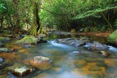 Waterfall. In Chet Khot Saraburi Province Thailand stock photography