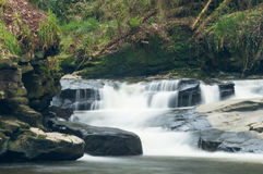 Waterfall in Clare Glens Stock Photos