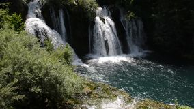 Waterfall with clean and fresh water. Nature and green forest in background stock video footage