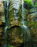 The waterfall from a cliff in forest Stock Photo