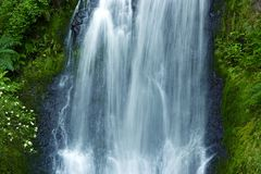 Waterfall Closeup Royalty Free Stock Photo