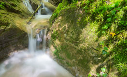 Waterfall. Closeup in the Alps, Austria Stock Photography