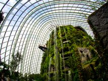 Waterfall in Cloud Forest Dome at Gardens by the bay, Singapore-12 SEP. 2017 stock photos