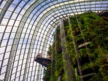 Waterfall in Cloud Forest Dome at Gardens by the bay, Singapore-12 SEP. 2017 royalty free stock photo