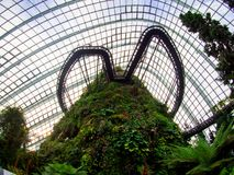 Waterfall in Cloud Forest Dome at Gardens by the bay, Singapore-12 SEP. 2017 stock images