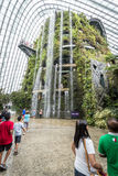 Waterfall in Cloud Forest, Singapore. Waterfall in Cloud Forest in Gardens by the Bay, Singapore Stock Photos