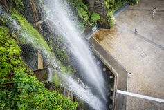 Waterfall in Cloud Forest, Singapore. Waterfall in Cloud Forest in Gardens by the Bay, Singapore Royalty Free Stock Photography