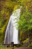 Waterfall on Colambia Royalty Free Stock Photography