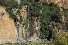 Waterfall in the Colca Canyon in Peru Royalty Free Stock Photo