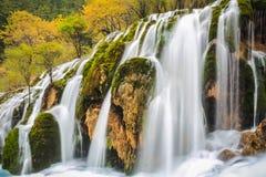 Waterfall in colorful autumn at jiuzhaigou,sichuan,China. Stock Photos