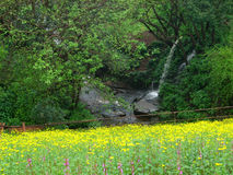 Waterfall in countryside. Scenic view of waterfall in countryside with flowery meadow in foreground Stock Image