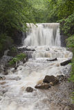 Waterfall in countryside. Scenic view of rocky waterfall in forested countryside Stock Photo