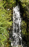 Waterfall in countryside. Close up of water cascading in waterfall, surrounded by green vegetation Stock Images