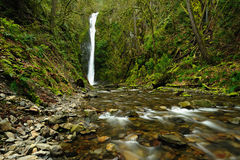 Waterfall and creek Royalty Free Stock Image