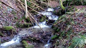 The waterfall on a creek in forest stock video footage