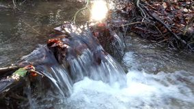 The waterfall on a creek in forest stock footage