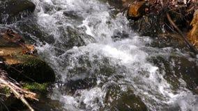 Waterfall Creek in Nature stock video footage