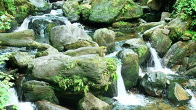 Waterfall on a creek with stones Stock Photography
