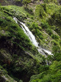 Waterfall Crosses a Trekking Trail in the Annapurna Himalayas Stock Image