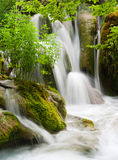 Waterfall currents in national park. Plitvice. Croatia. Popular touristic destination with lush vegetation Royalty Free Stock Photos