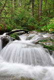 Waterfall in the Czech Republic Royalty Free Stock Photography